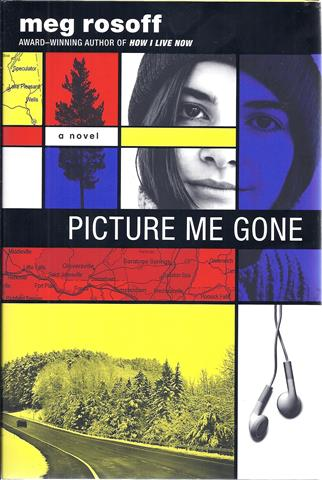 Image for Picture Me Gone