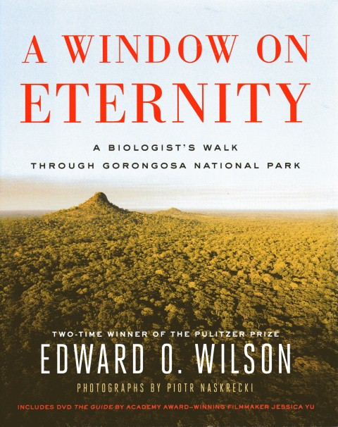 Image for A Window on Eternity