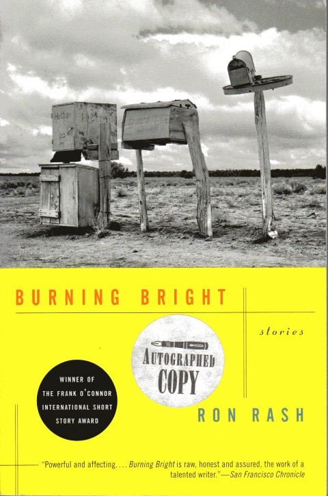 Image for Burning Bright: Stories