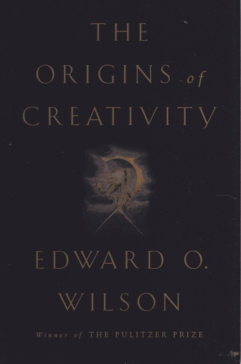 Image for The Origins of Creativity