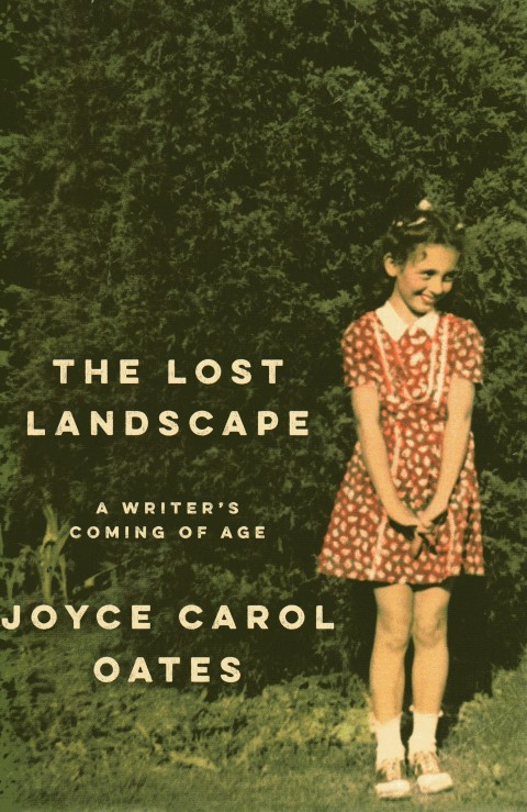 Image for The Lost Landscape