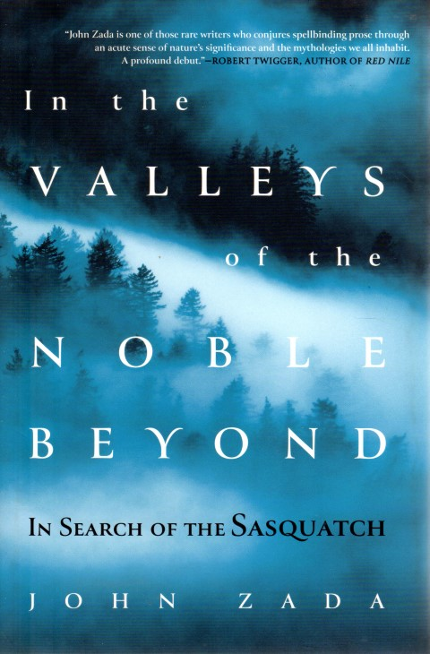 Image for In the Valleys of the Noble Beyond