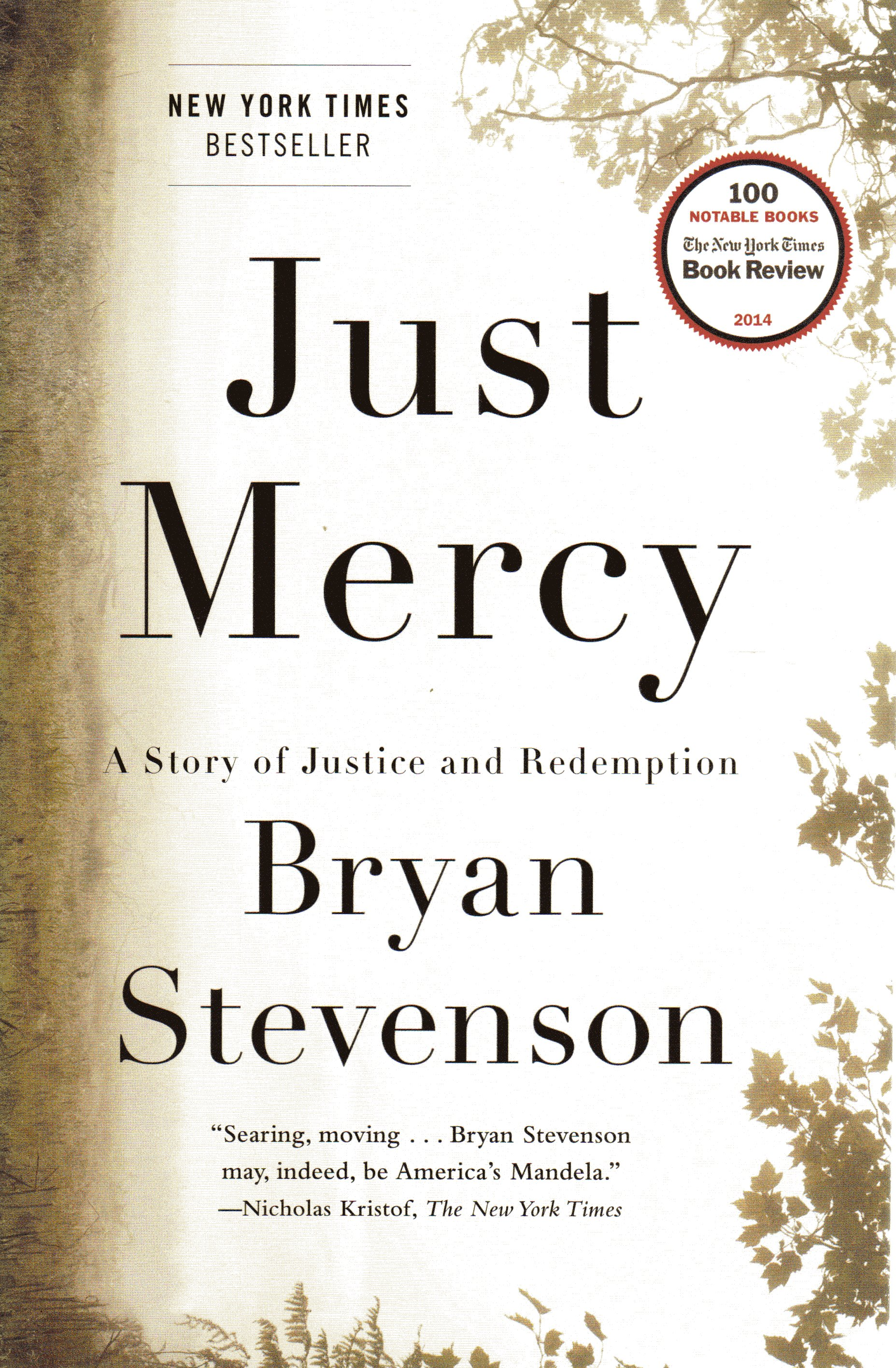Image for Just Mercy: A Story of Justice and Redemption