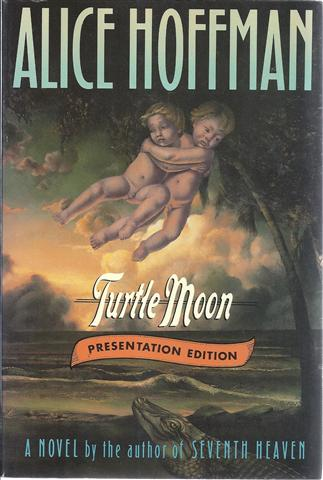 Image for Turtle Moon